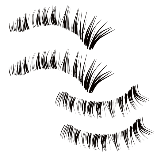 Collada/_AllAnimPlayer/images/eyelashes01.png