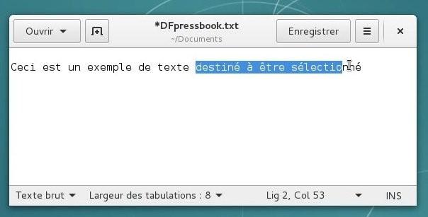 docs/img/selection_texte.jpg