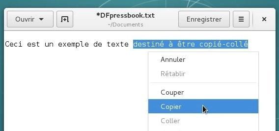 docs/img/copier_coller_1.jpg