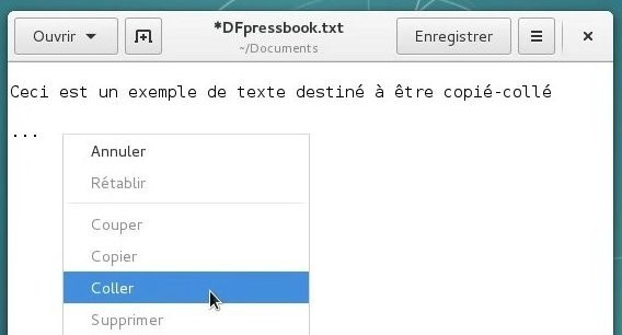 docs/img/copier_coller_2.jpg