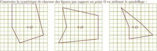 data/ex/cinquiemes/img/symetrie.png